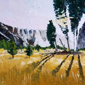 Yosemite Late Afternoon