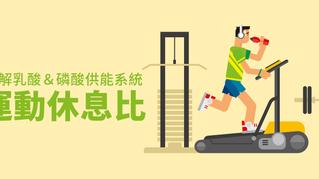 扣取港 / 了解3大能量系統,排球員體能訓練不得不知的「運動休息比」