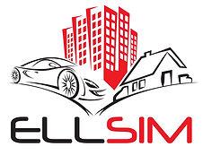 Ellsim Detailing logo.jpg