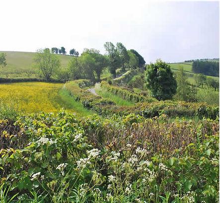 towards llanfair from dowke hill small.j
