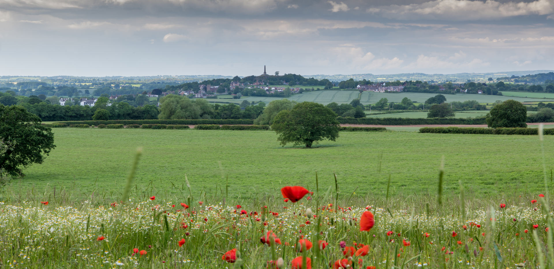 (c) Rob Hall: Lilleshall Monument (highly commended)