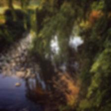 attingham1-web.jpg