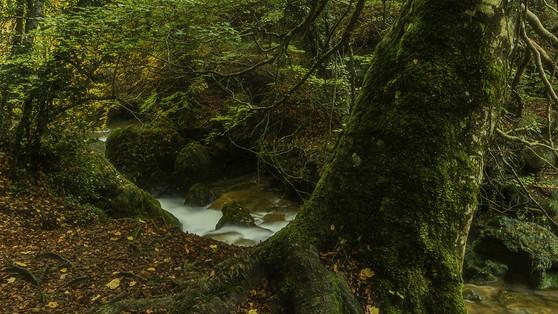 Noviembre_021 Jose Luis García 2.jpg