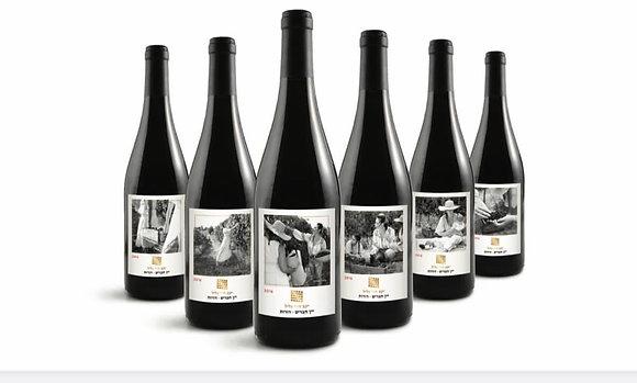 שישיית יין חברים-דורות 2016
