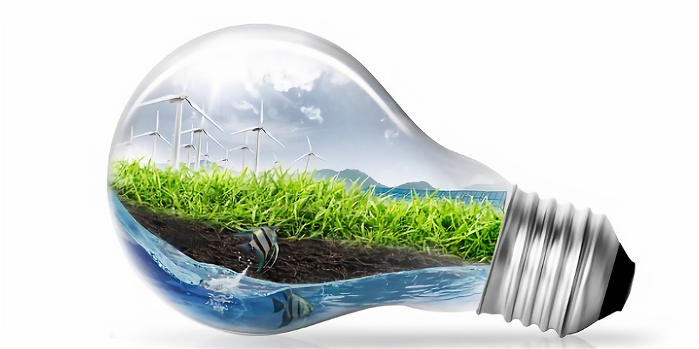 Virtual Conference on Future of Renewable Energy in India