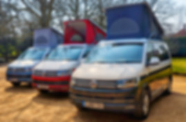 Colourful VW Campers for hire