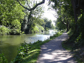 Chichester-canal-tow-path.jpg