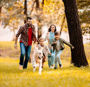Dog family fun.JPG