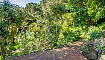 bournemouth walks.jpg