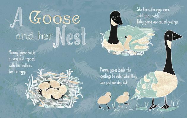 goose nests.jpg