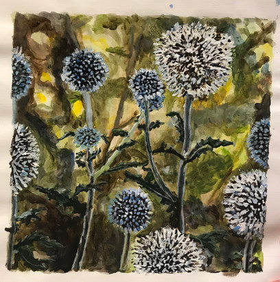 Thistles and Dandelions