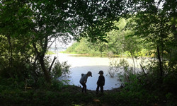 дети на озере