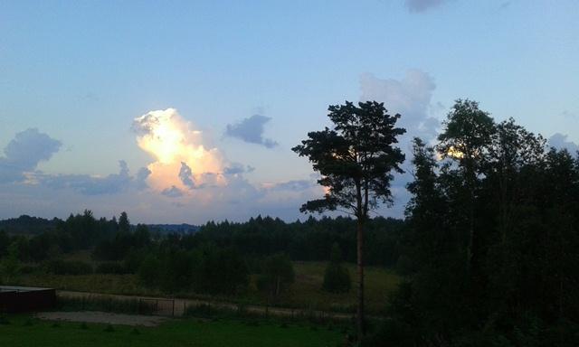 летний дачный пейзаж