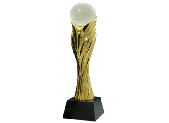 מגן רזין זהב כדורסל