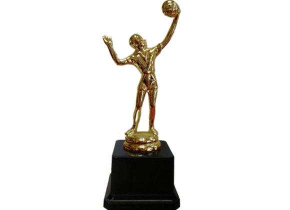 גביע כדורשת/כדורעף דמות זהב
