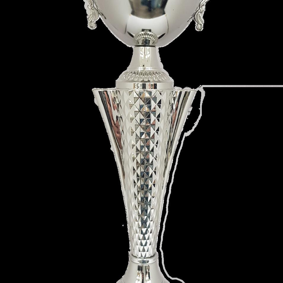 גביע 520 כסף.png