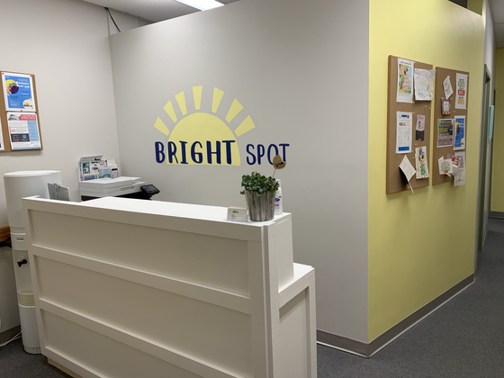 Why Bright Spot?