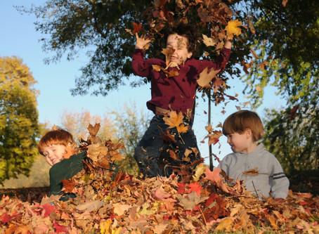 Fun Friday - Falling for Fall