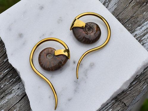 8g Ammonite Swans with Yellow Brass