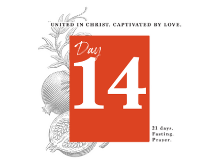 DAY 14 - WHERE DID LOVE GO?