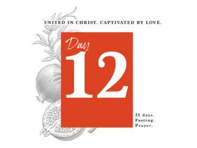 DAY 12 - DARK BUT LOVELY