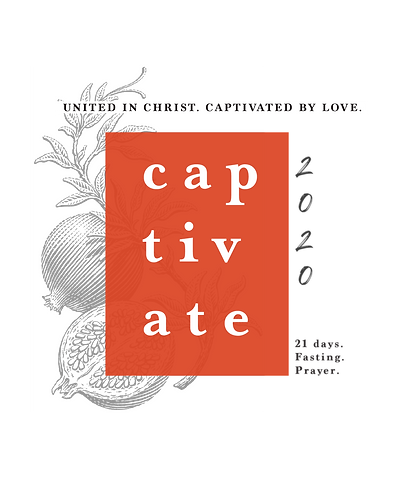 captivate-graphic-3.png