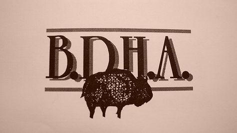 OLD BDHA Logo.jpg
