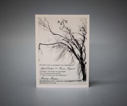 Invitation on pearlescent paper