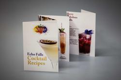 Z fold booklet