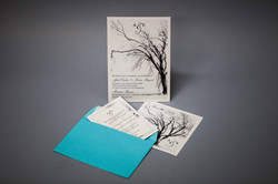 Invites on pearlescent paper