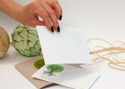 Seeded recycled paper