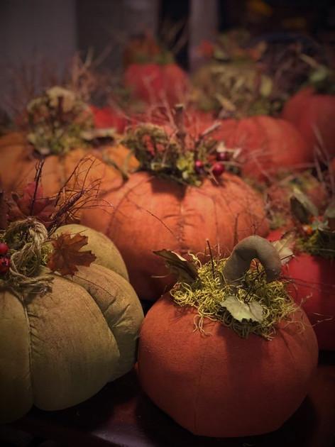 fall pumpkins.jpg