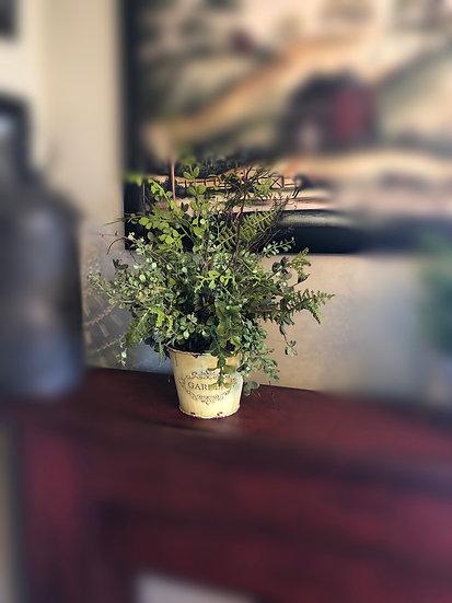 Garden pot w/ greens