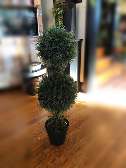 4' CYPRESS TOPIARY