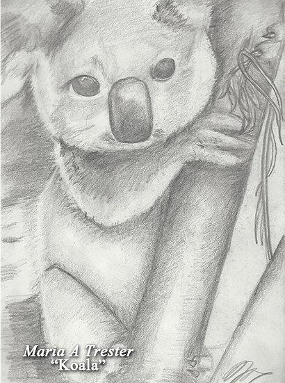 """""""Koala"""" 8.5""""x11"""" Print w/ Frame"""