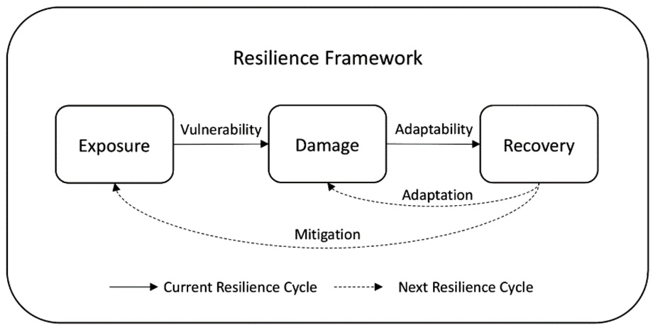 The Resilience Inference Measurement (RIM) Model