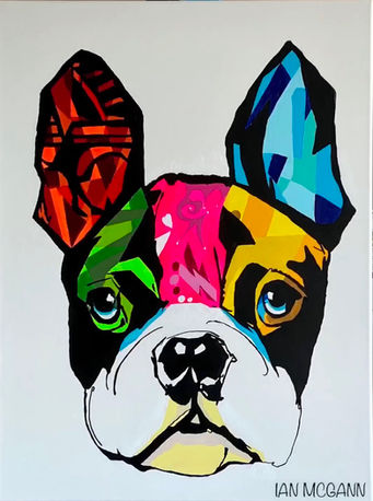 Colorful Frenchie - 60 x 80 cm