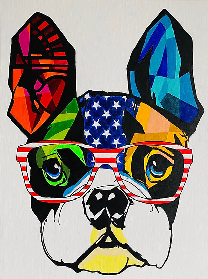 Colorful American Frenchie