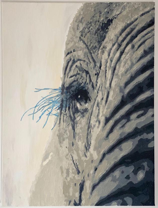 Elephant blue eyelashes