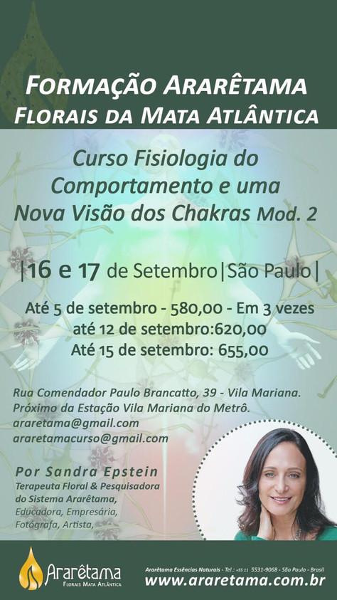 Curso presencial com Sandra Epstein em S Paulo
