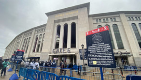 Yankees Fans Reflect on Opening Day - Nicole McNulty