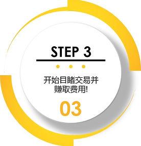 step33c.jpg