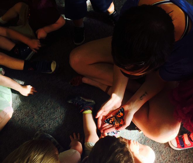 The Caterpillar's Footprint