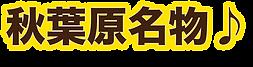 秋葉原名物.png