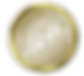 gold-seal-300x273.png