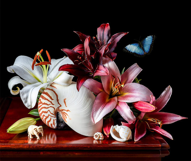 Lilies and Butterfly, photography by Yana Slutskaya