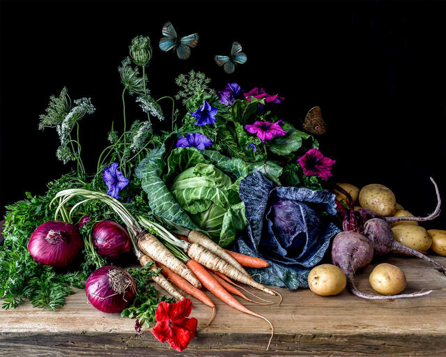 Vegetables and Petunias