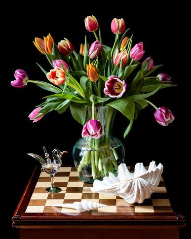 Tulips and Seashell