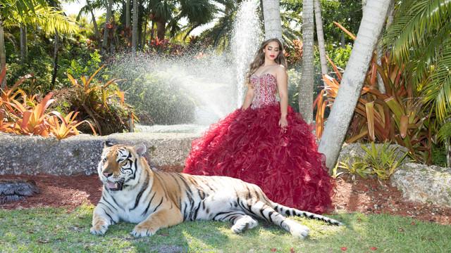 Lorena IvonnePhoto 353A2098 tigre.jpg