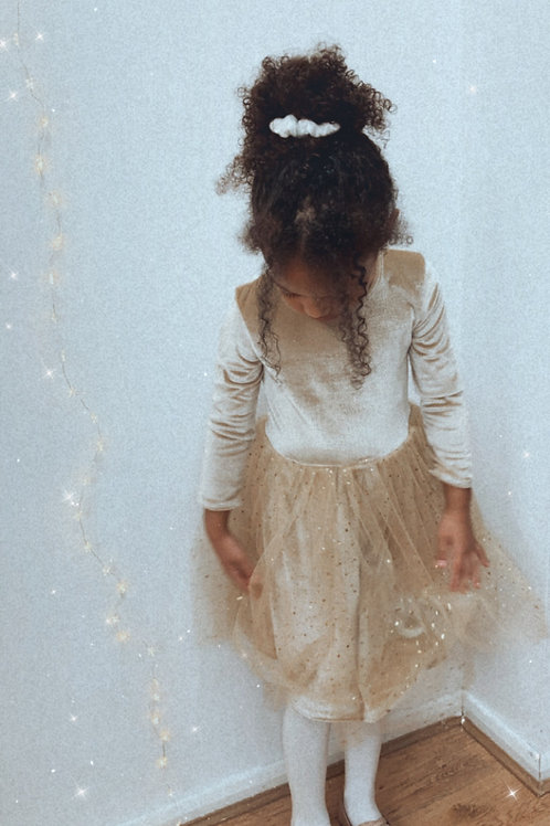Long Sleeve Velvet Sparkly Tutu Dress